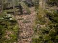 Abandoned mill AVA MO