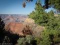 Grand Canyon GC10