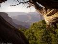 Grand Canyon CG3