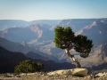 Grand Canyon GC1