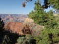 Grand Canyon GC10
