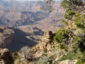 Grand Canyon GC11