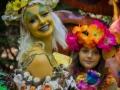 TRF Fairys 3